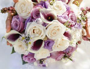 Düğün telaşına girmeden, daha sade bir törenle 'evet' demek isteyenler için Elite World Otelleri benzersiz bir nikah atmosferi sunuyor.