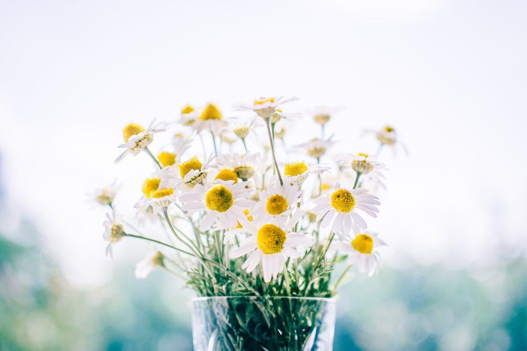 Evinizde Yaz Mevsimi Hazırlıkları İçin Öneriler